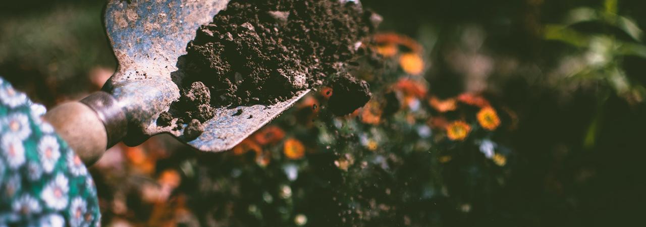 أسئلة التربة و الري