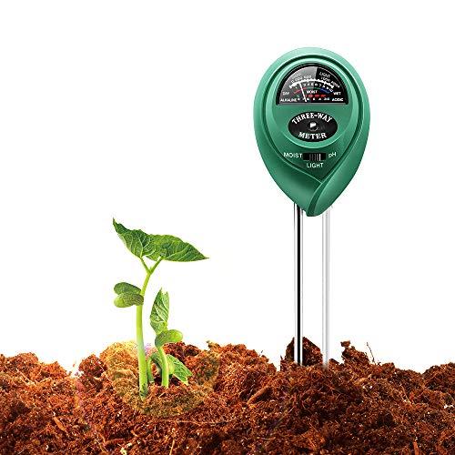 درجة الحموضة التربة المثلى للنباتات المنزلية
